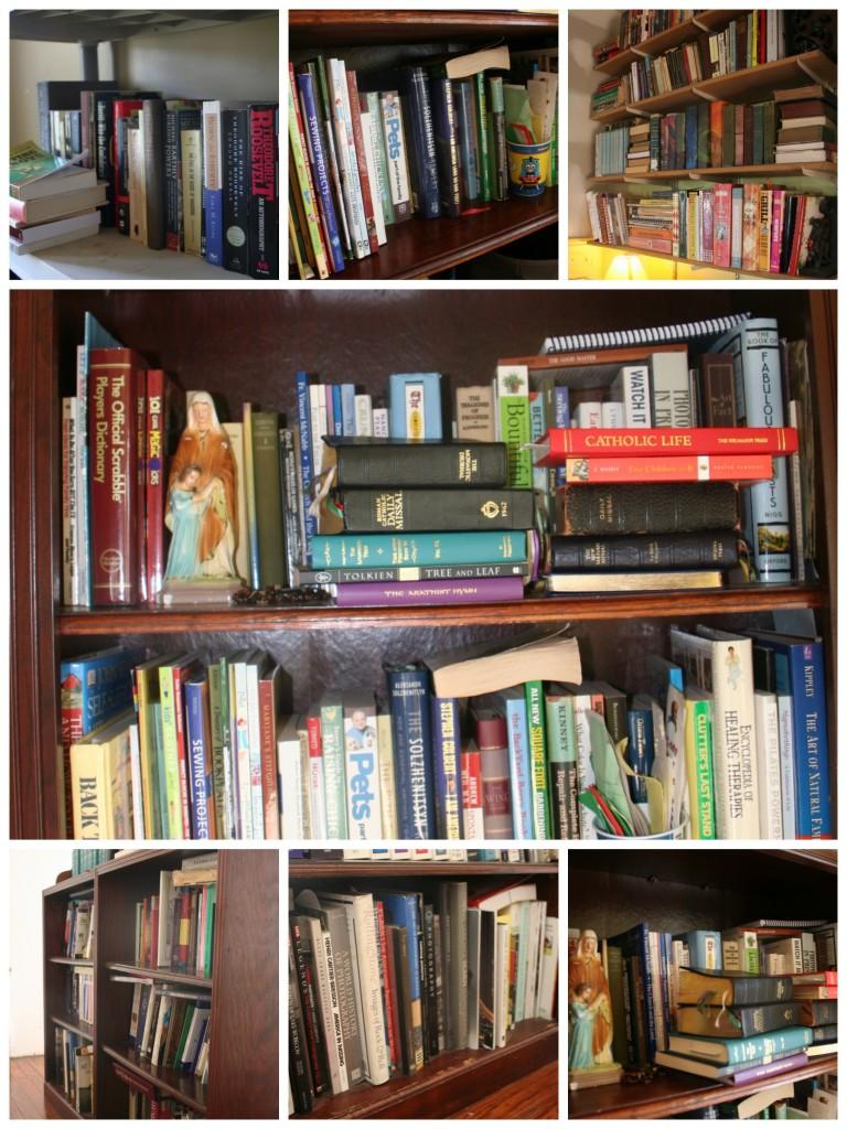 bookshelf collage