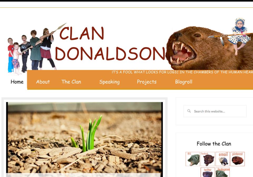 CLAN DONALDSON