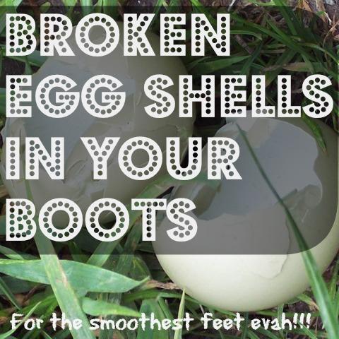 eggshellstip