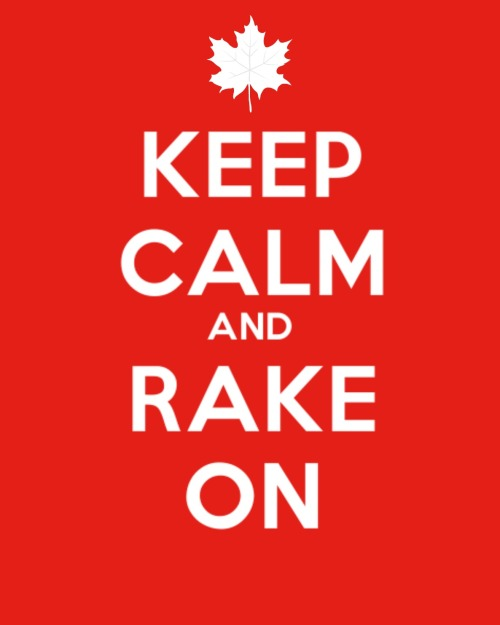 keepcalmrakeon