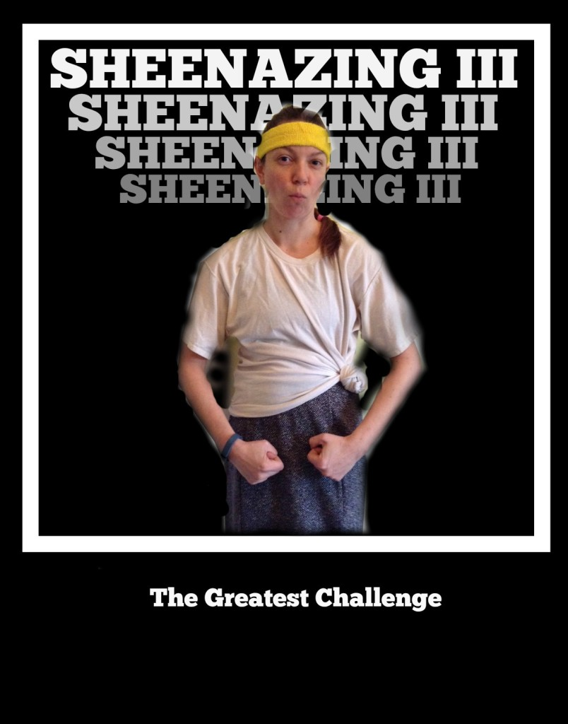 sheenazingIIIposter2
