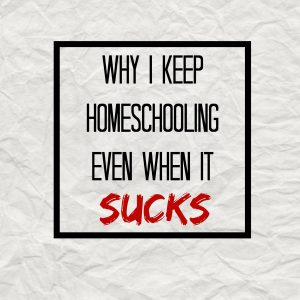 why i keep homeschooling